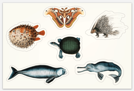 Pegatinas Vintage Historia Natural hoja 152x102mm