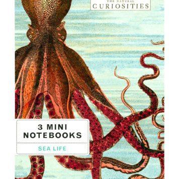 3 Mini Books Sea Life Vintage Illustrations