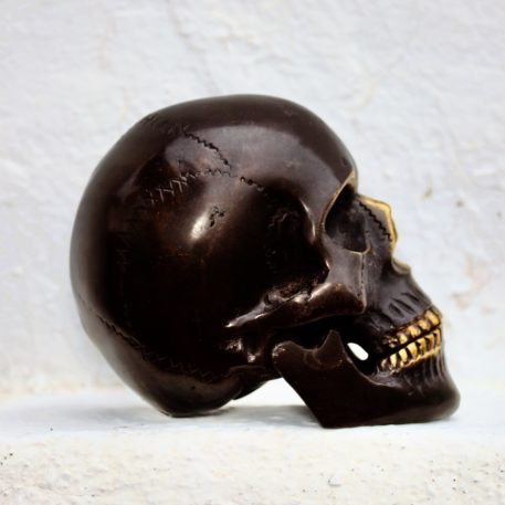 Bronce fundido Cráneo Homo Sapiens