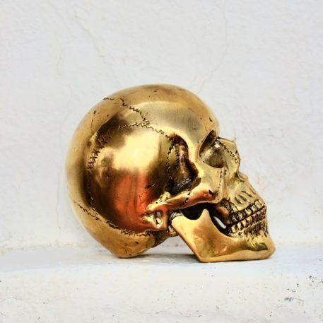 Cast Bronze of Homo Sapiens Skull