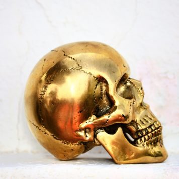 Cast Bronze of Homo Sapiens Skull
